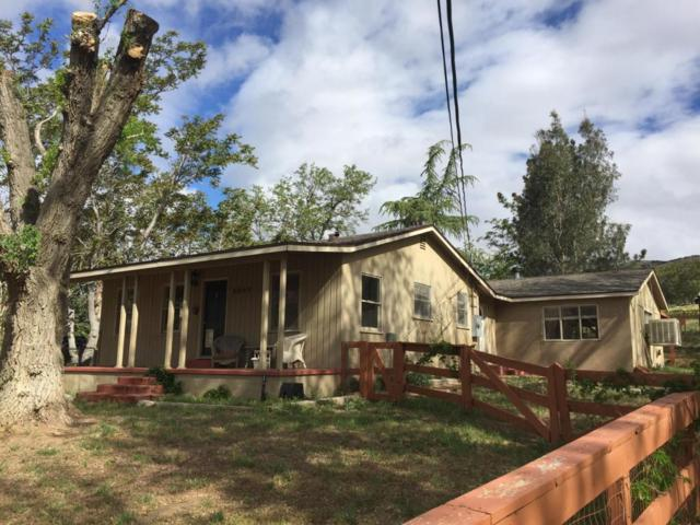 8805 Elizabeth Lake Road, Leona Valley, CA 93551 (#18000096) :: The Real Estate Offices of Talbot and Watson