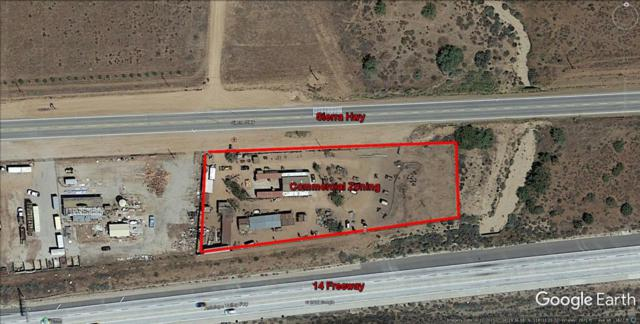 Sierra Highway, Acton, CA 93510 (#18000605) :: The Real Estate Offices of Talbot and Watson