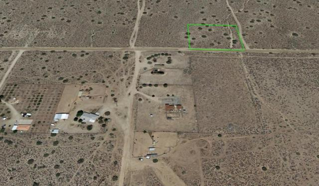 22300 E Fort Tejon Drt Vic 223, Llano, CA 93544 (#18000620) :: The Real Estate Offices of Talbot and Watson