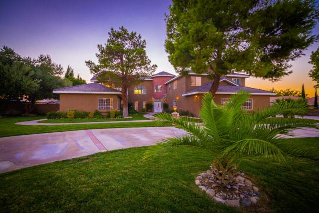 42123 W 22nd Street, Lancaster, CA 93536 (#18002012) :: The Real Estate Offices of Talbot and Watson