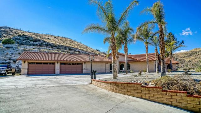10002 Soledad Canyon Road, Agua Dulce, CA 91390 (#18002395) :: The Real Estate Offices of Talbot and Watson