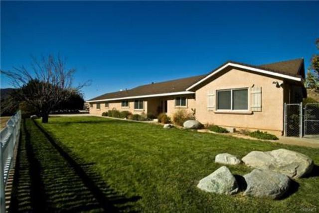 9235 Leona Avenue, Leona Valley, CA 93551 (#18005260) :: The Real Estate Offices of Talbot and Watson