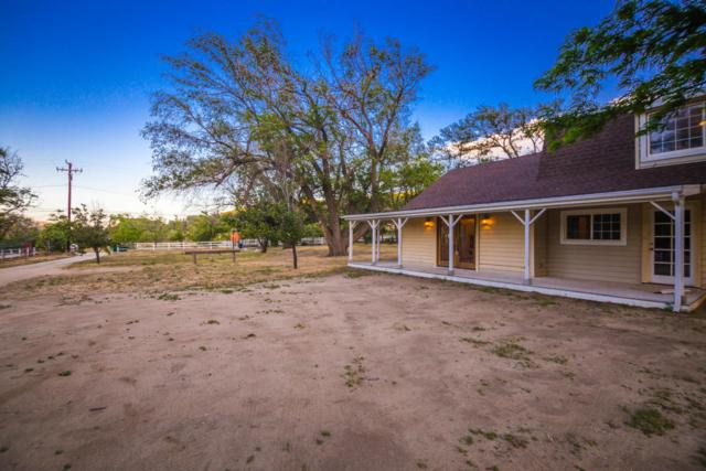 40241 W 107th Street, Leona Valley, CA 93551 (#18005269) :: The Real Estate Offices of Talbot and Watson