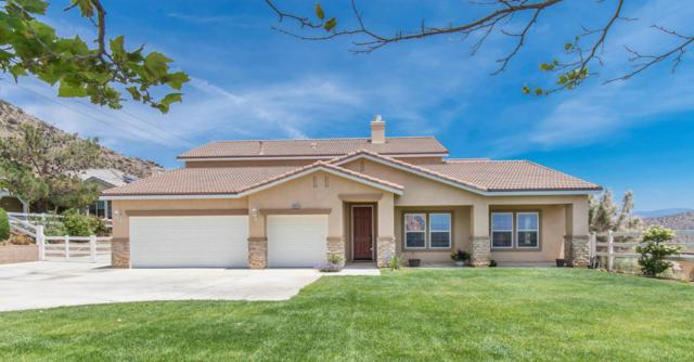 34662 Desert Road, Acton, CA 93510 (#18006214) :: The Real Estate Offices of Talbot and Watson