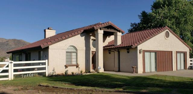 32996 Old Miner Road, Acton, CA 93510 (#18006272) :: The Real Estate Offices of Talbot and Watson
