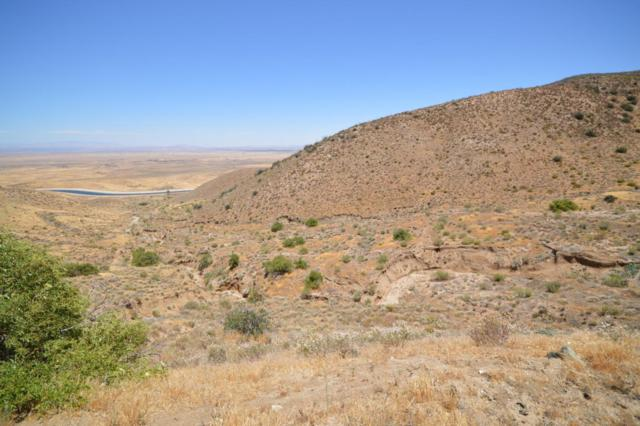 0000 Vic 140th Stw Aqueduct, Leona Valley, CA 93551 (#18008804) :: The Real Estate Offices of Talbot and Watson