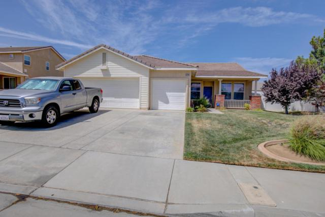 42341 Ridge View Drive, Lancaster, CA 93536 (#18008894) :: The Real Estate Offices of Talbot and Watson