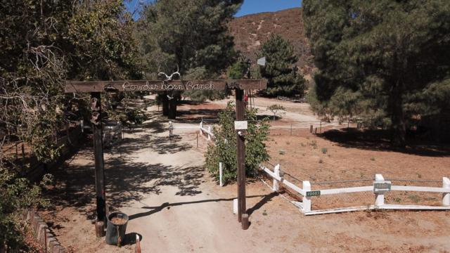 40003 W 107th Street, Leona Valley, CA 93551 (#18009628) :: The Real Estate Offices of Talbot and Watson