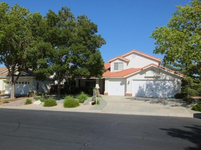 40948 Flagstone Street, Palmdale, CA 93551 (#18009748) :: The Real Estate Offices of Talbot and Watson