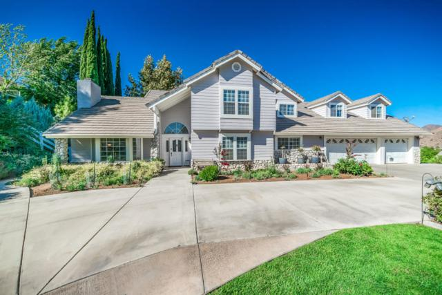 3947 Sourdough Road, Acton, CA 93510 (#18009962) :: The Real Estate Offices of Talbot and Watson