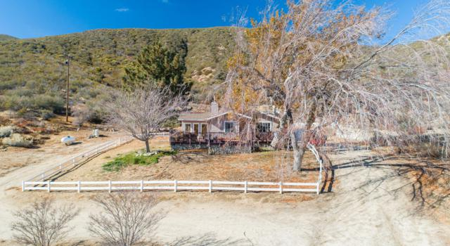 40201 W 107th Street, Leona Valley, CA 93551 (#19001701) :: The Real Estate Offices of Talbot and Watson