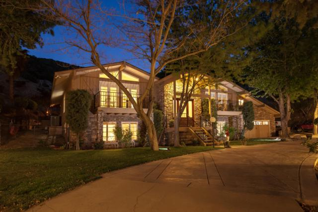 11111 Lonesome Valley Road, Leona Valley, CA 93551 (#19001813) :: The Real Estate Offices of Talbot and Watson