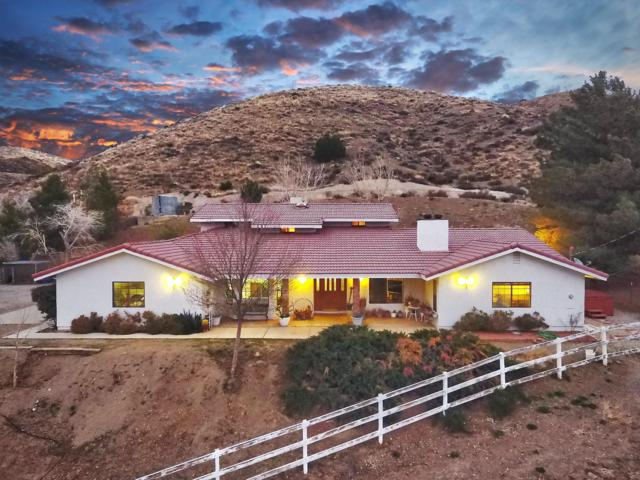 6600 Godde Hill Road, Leona Valley, CA 93551 (#19001907) :: The Real Estate Offices of Talbot and Watson