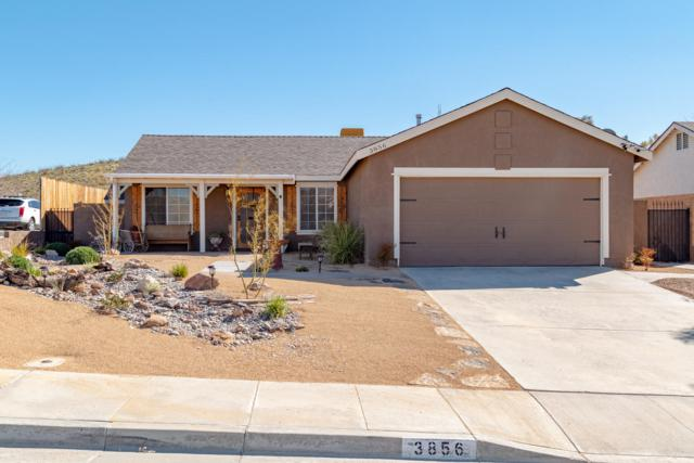 3856 United Street, Rosamond, CA 93560 (#19002872) :: The Real Estate Offices of Talbot and Watson