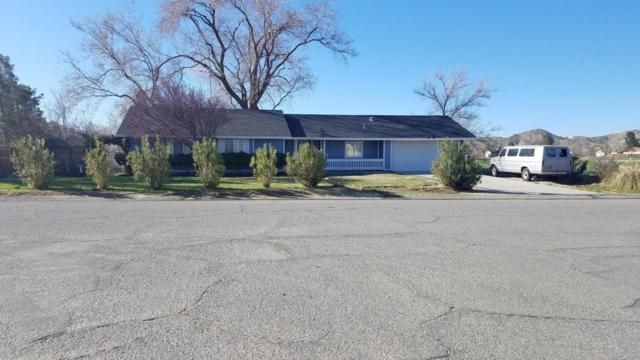 17260 Valeport Avenue, Lancaster, CA 93535 (#19003060) :: The Real Estate Offices of Talbot and Watson