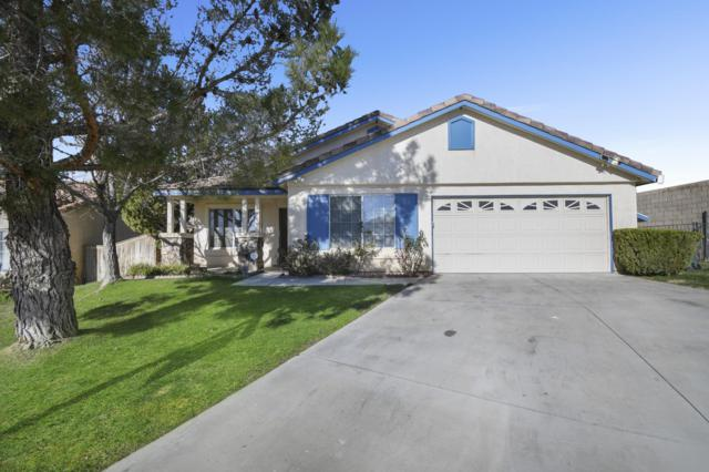 3437 Rodney Street, Rosamond, CA 93560 (#19003079) :: The Real Estate Offices of Talbot and Watson