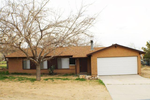 40127 E 172nd Street, Palmdale, CA 93591 (#19003116) :: The Real Estate Offices of Talbot and Watson