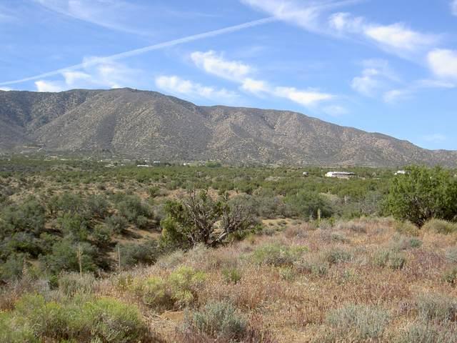 Vic Rainbow Acres Rd & 106 Road, Juniper Hills, CA 93543 (#20006837) :: HomeBased Realty