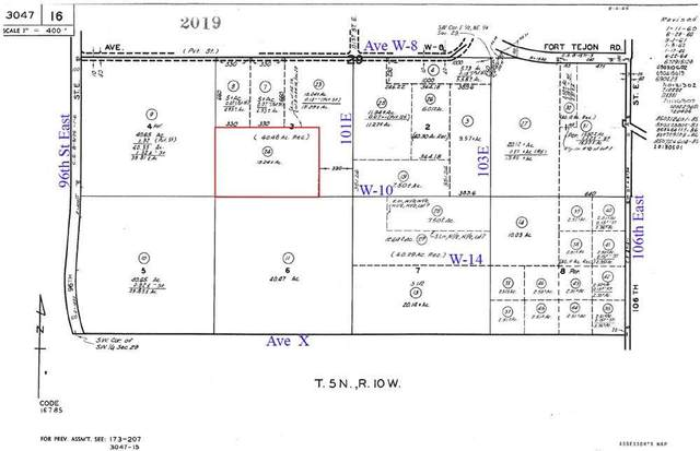 100th St East & Ave W10, Littlerock, CA 93543 (#20007138) :: HomeBased Realty