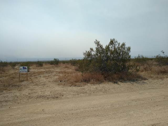 Ave T Vic 180th St East, Llano, CA 93544 (#20007791) :: HomeBased Realty