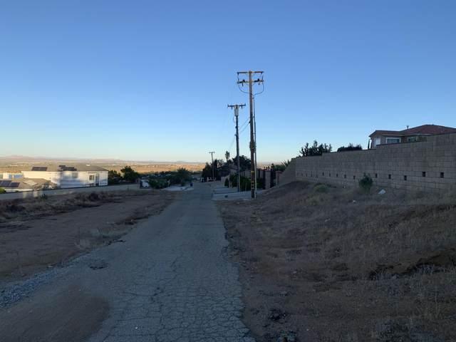 Aqueduct Vic El Camino Drive, Palmdale, CA 93551 (#20008772) :: HomeBased Realty