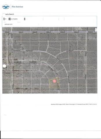 Desert Vista Dr / E Avenue O8 Drive, Palmdale, CA 93591 (#20009175) :: HomeBased Realty