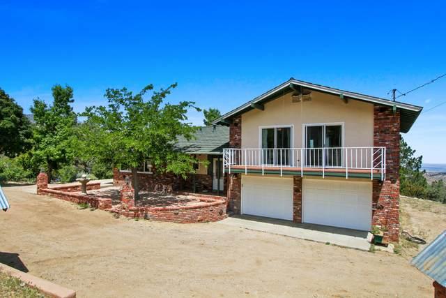 14650 Big Sky Drive, Juniper Hills, CA 93553 (#20009339) :: HomeBased Realty