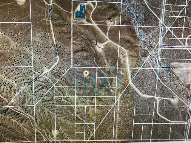 Ptn Sw1/4 Sec11 T9n R15w Excl, Rosamond, CA 93560 (#20009398) :: HomeBased Realty