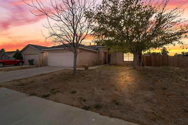 1040 Wedgewood Avenue, Rosamond, CA 93560 (#20009426) :: HomeBased Realty