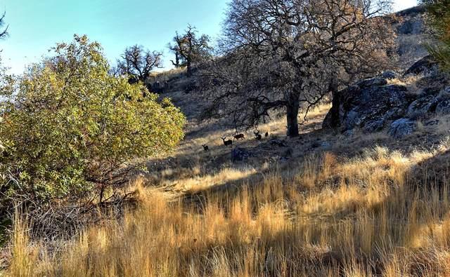 Stallion Springs Drive, Tehachapi, CA 93561 (#20009539) :: HomeBased Realty