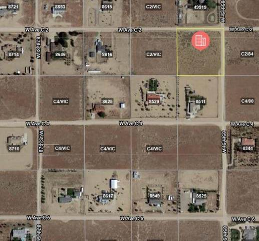 Avenue C2 & 85th St W, Lancaster, CA 93536 (#20009557) :: HomeBased Realty