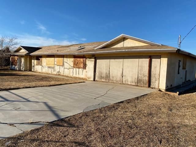 10107 E R14 Avenue, Littlerock, CA 93543 (#21000417) :: HomeBased Realty