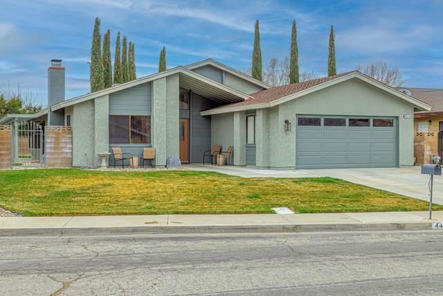 44211 Fine Street, Lancaster, CA 93536 (#21001769) :: HomeBased Realty