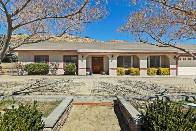 9231 Elizabeth Lake Road, Leona Valley, CA 93551 (#18002552) :: The Real Estate Offices of Talbot and Watson