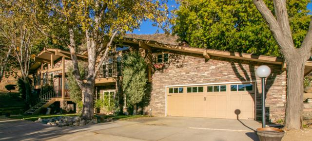 11111 Lonesome Valley Road, Leona Valley, CA 93551 (#18012109) :: The Real Estate Offices of Talbot and Watson