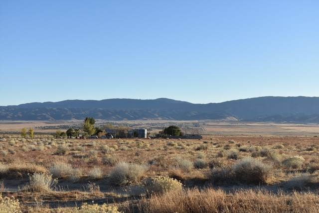 266th Ave West N/O Patterson, Rosamond, CA 93560 (#20009482) :: HomeBased Realty