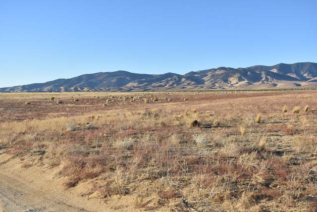 26000 Patterson Rd & 260th St, Rosamond, CA 93560 (#20009490) :: HomeBased Realty