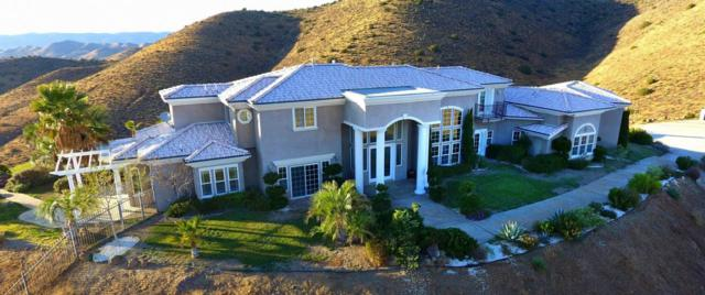 8511 Valley Sage Road, Agua Dulce, CA 91390 (#17010771) :: The Real Estate Offices of Talbot and Watson
