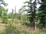 79 acres Fox Hollow & Ventris Road - Photo 13