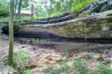 11764 Dogwood Drive - Photo 21