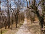22391 Dam Site Road - Photo 13