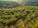 Skylight Mountain Road - Photo 3