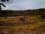 600 Acres County Road 524 - Photo 12
