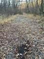 600 Acres County Road 524 - Photo 17