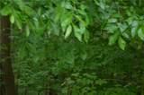 10648 Meadowlark Lane - Photo 4