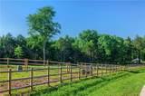 3500 Hawksbill Road - Photo 7