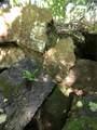 Winn Creek - Photo 18