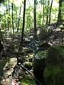 Winn Creek - Photo 19