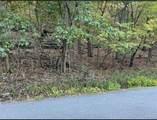 Hickory Drive - Photo 4