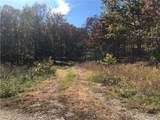 11002 Tony Mountain Road - Photo 15